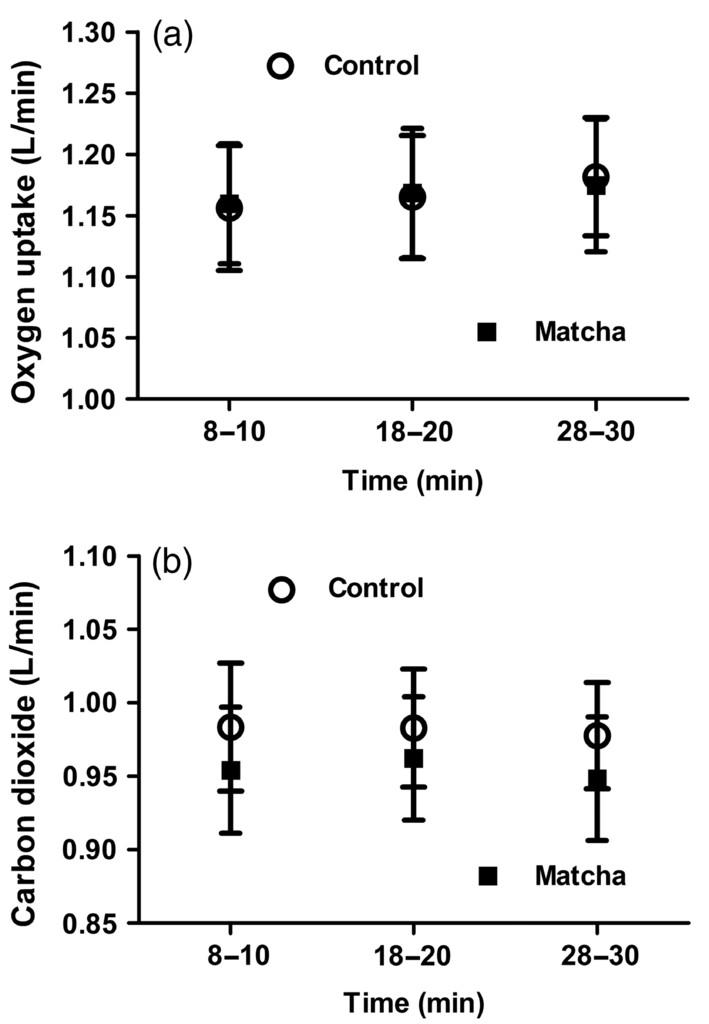 Matcha Green Tea Drinks Enhance Fat Oxidation During Brisk