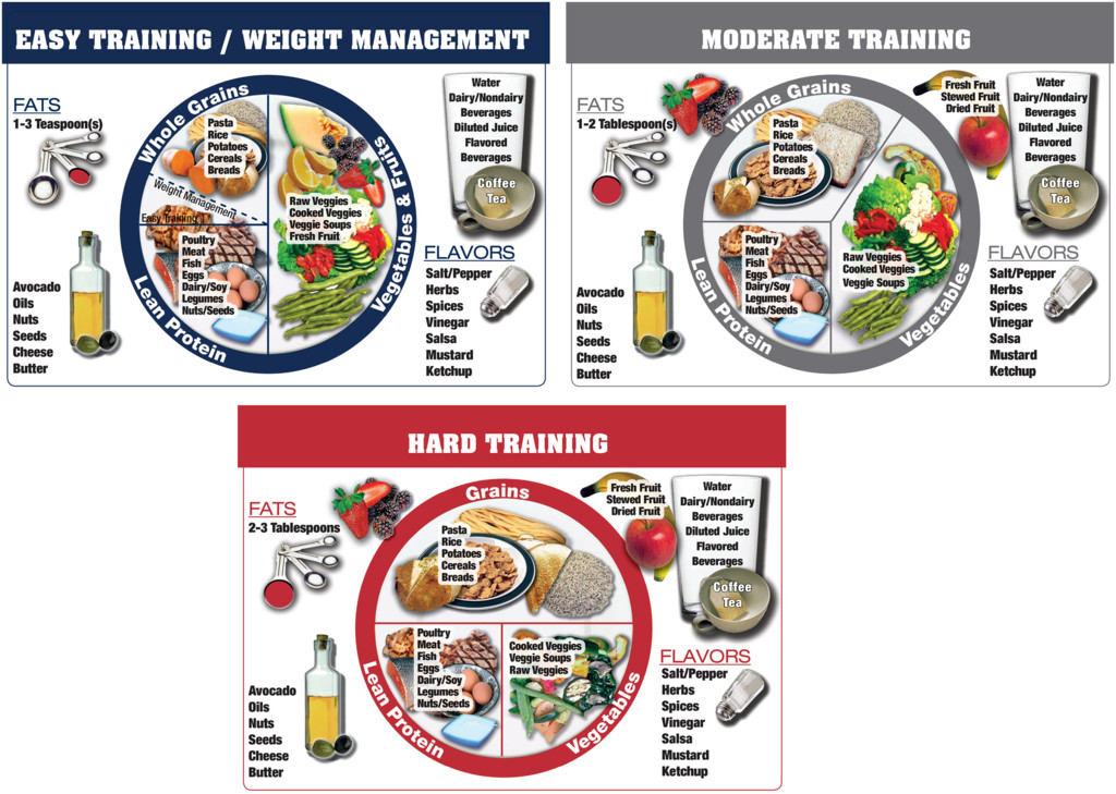 Validation of the Athlete's Plate Nutrition Educational Tool: Phase I in:  International Journal of Sport Nutrition and Exercise Metabolism Volume 29  Issue 6 (2019)