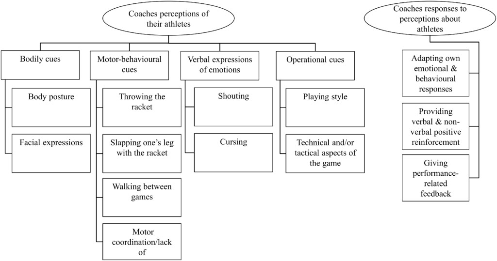 Coaches' Perceptions of Athletes' Psychobiosocial States