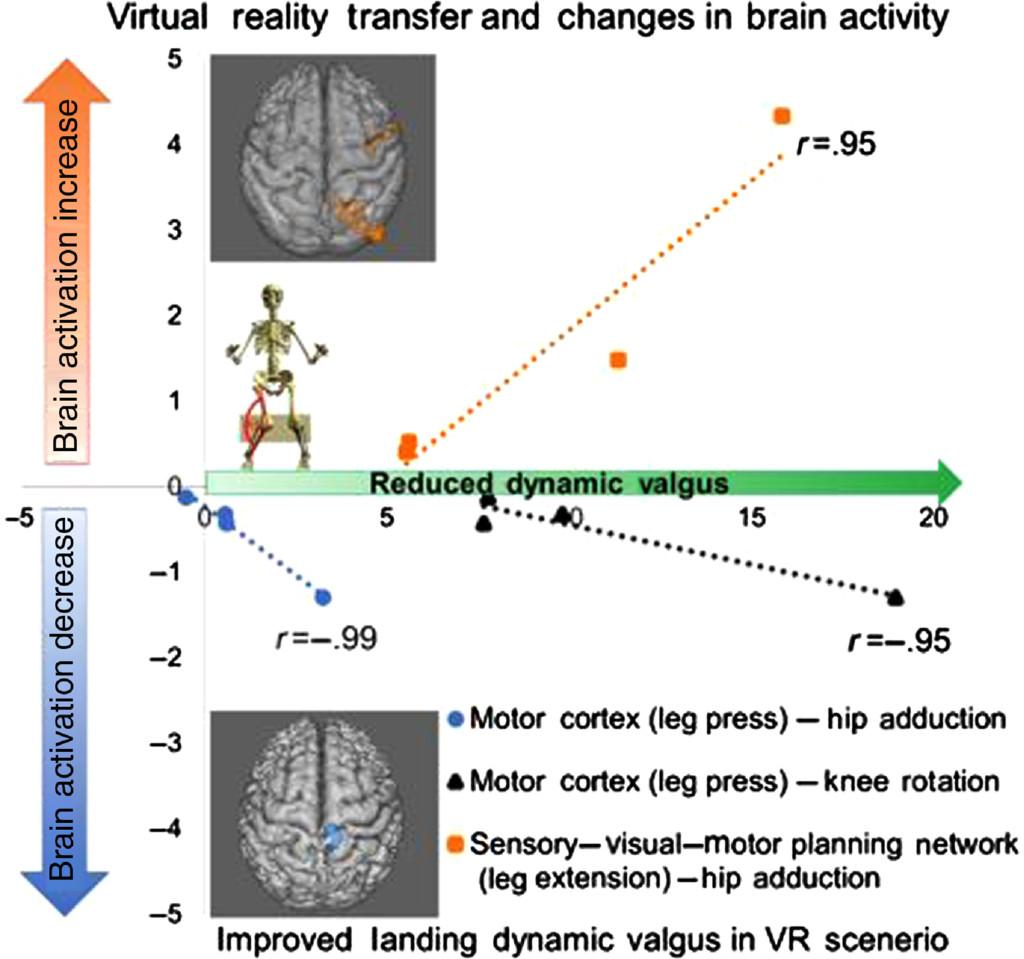 Brain-Behavior Mechanisms for the Transfer of Neuromuscular