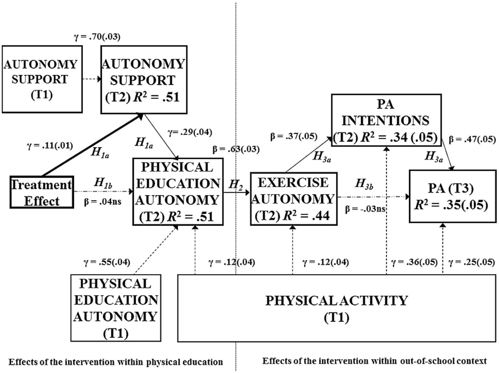 Motivational Pathways to Leisure-Time Physical Activity