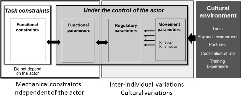 Action, Movement, and Culture: Does Culture Shape Movement? in