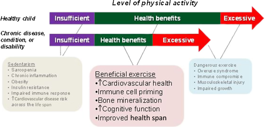 Exercise Science and Child Health: A Tale of Many Journeys