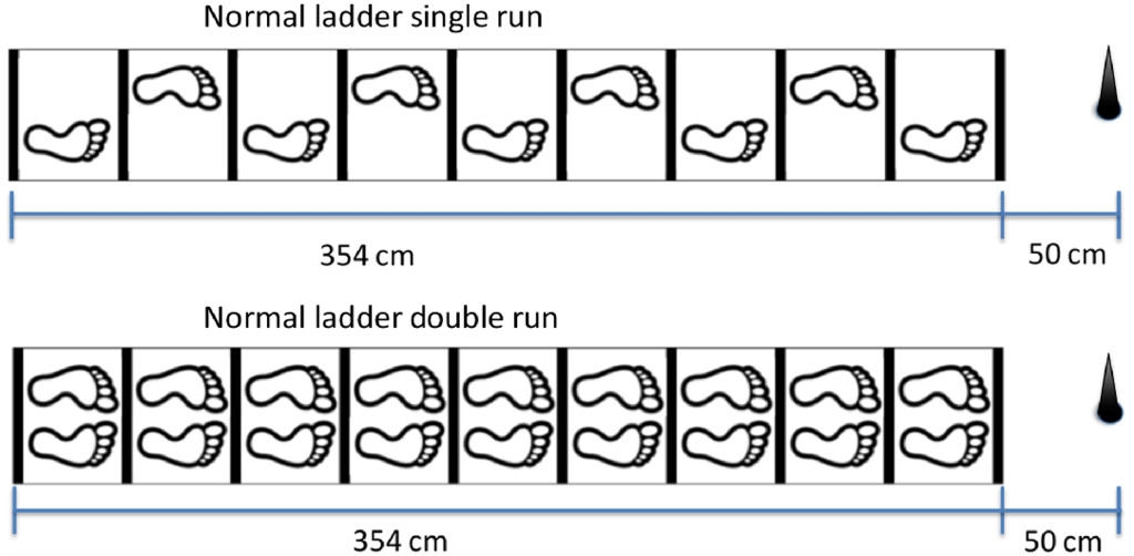 Reliability and Validity of the Ladder Agility Test Among