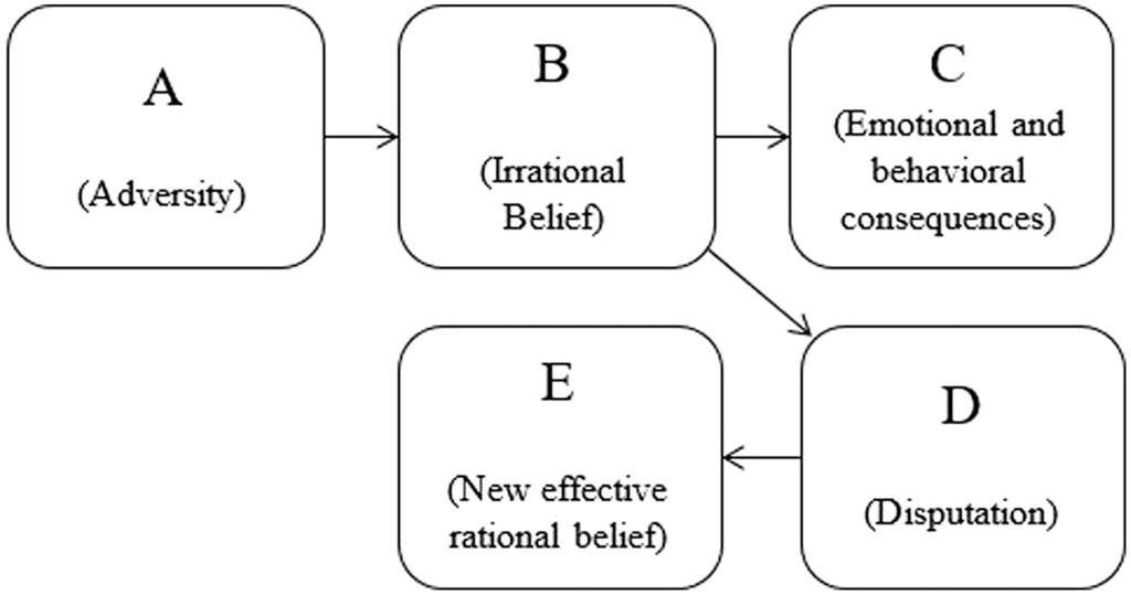 Exploring The Effects Of A Single Rational Emotive Behavior