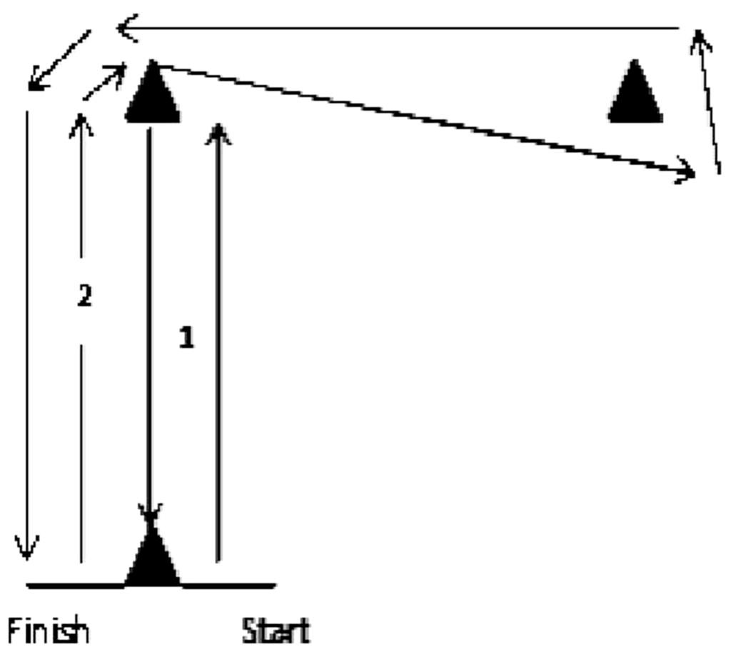Ecovery Test L 1 – Meta Morphoz